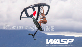Wasp wing foil ozone